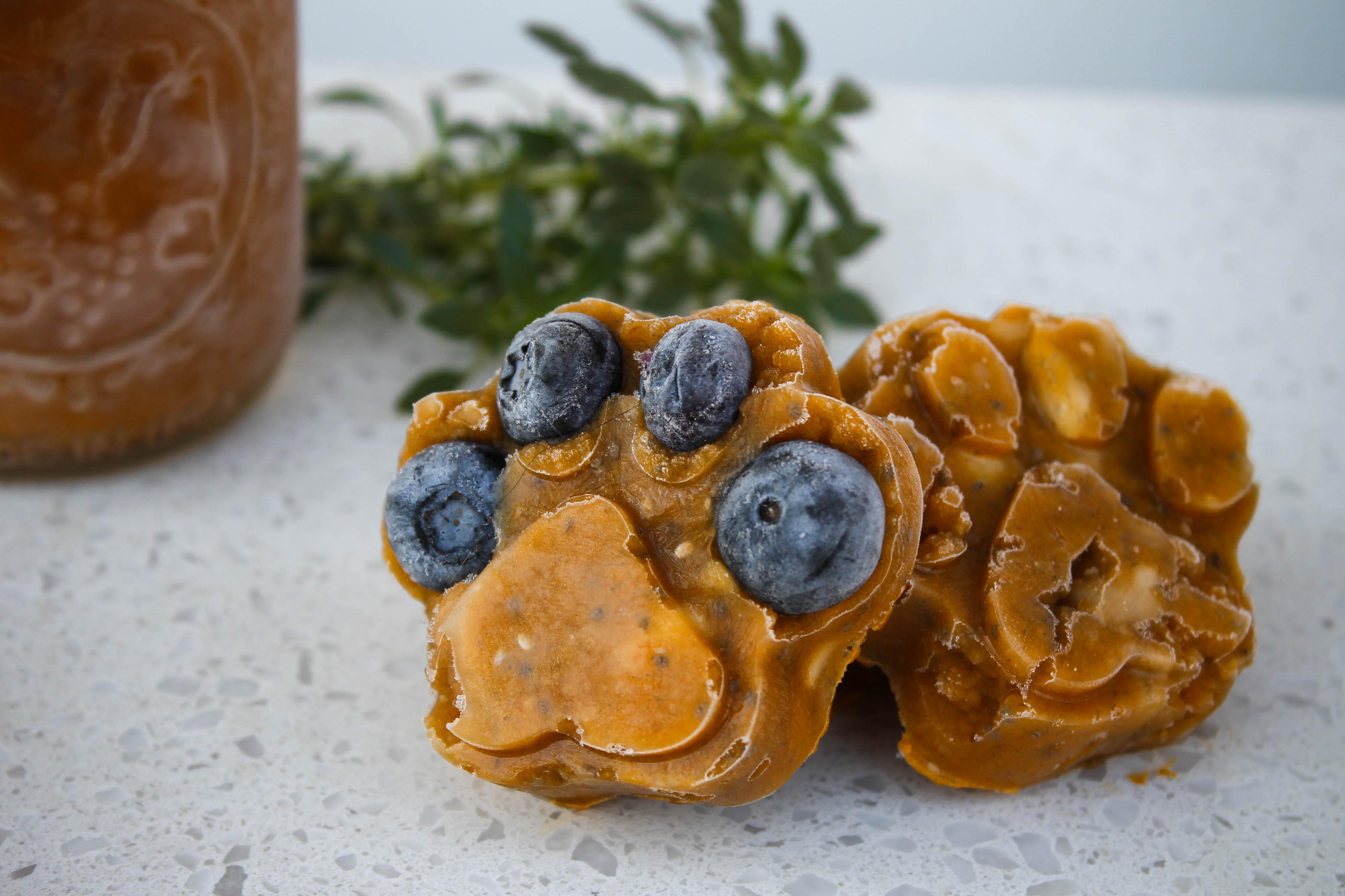 Pumpkin Pawps